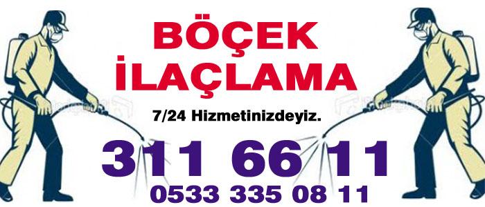 Ankara Fare Haşere İlaçlama